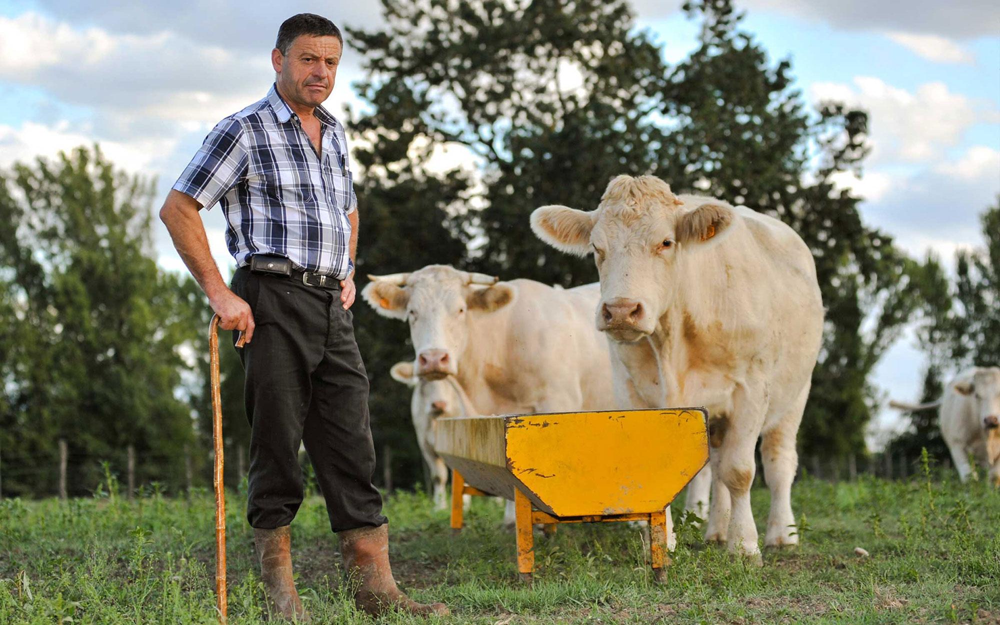 Conseil européen des ministres de l'Agriculture: la nouvelle PAC se dessine en respectant la réalité belge