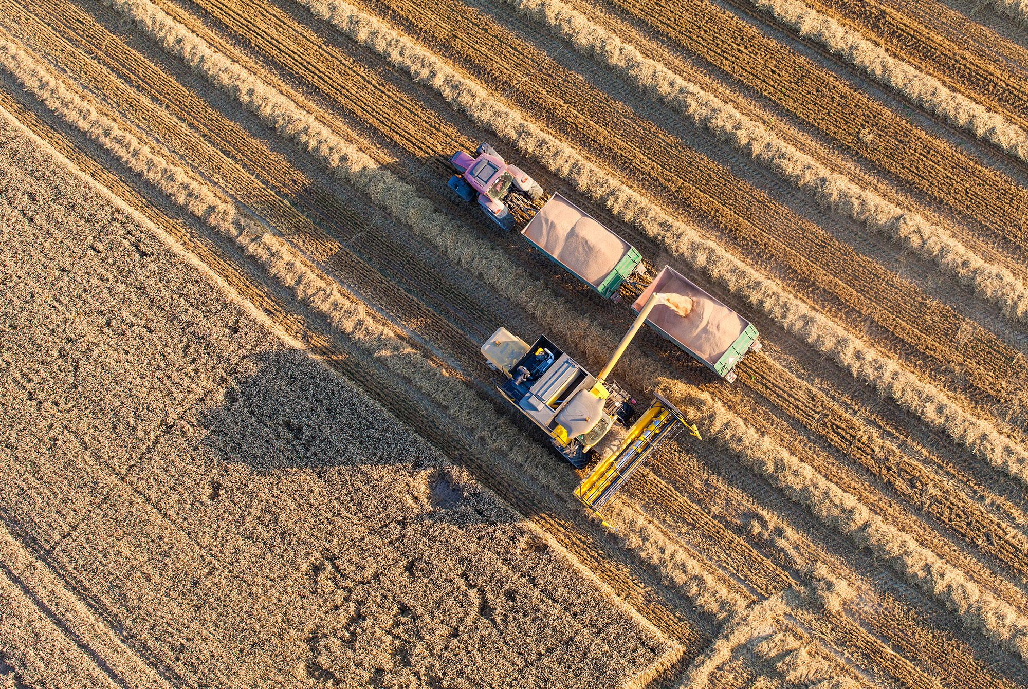 31,5 millions pour les agriculteurs victimes de la sécheresse de l'été 2018