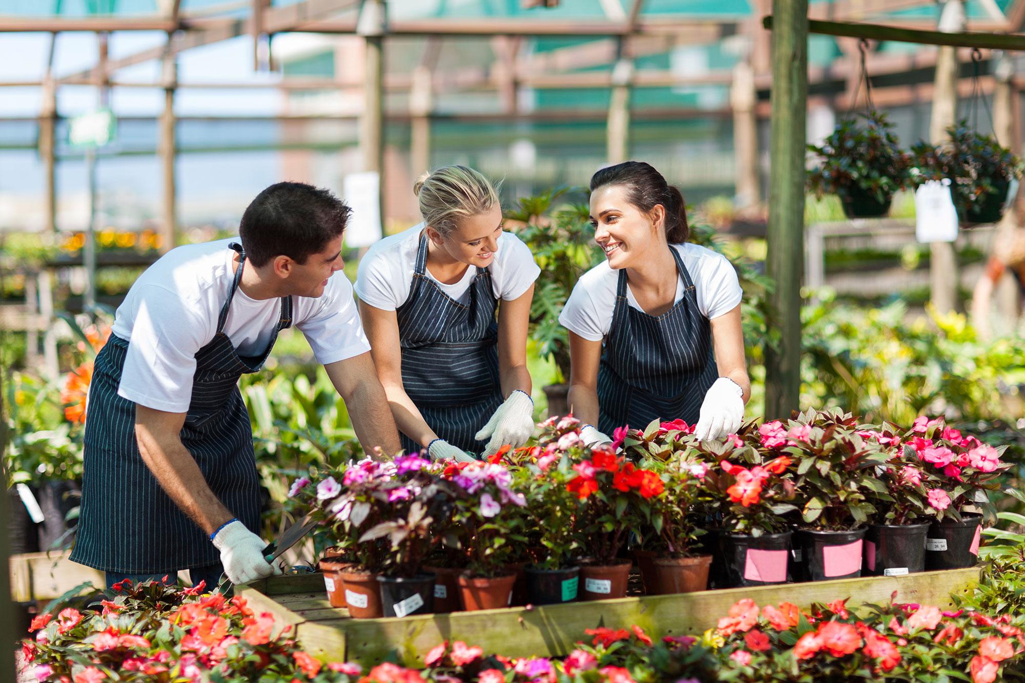 Simplification administrative : 120 mesures pour booster les PME !