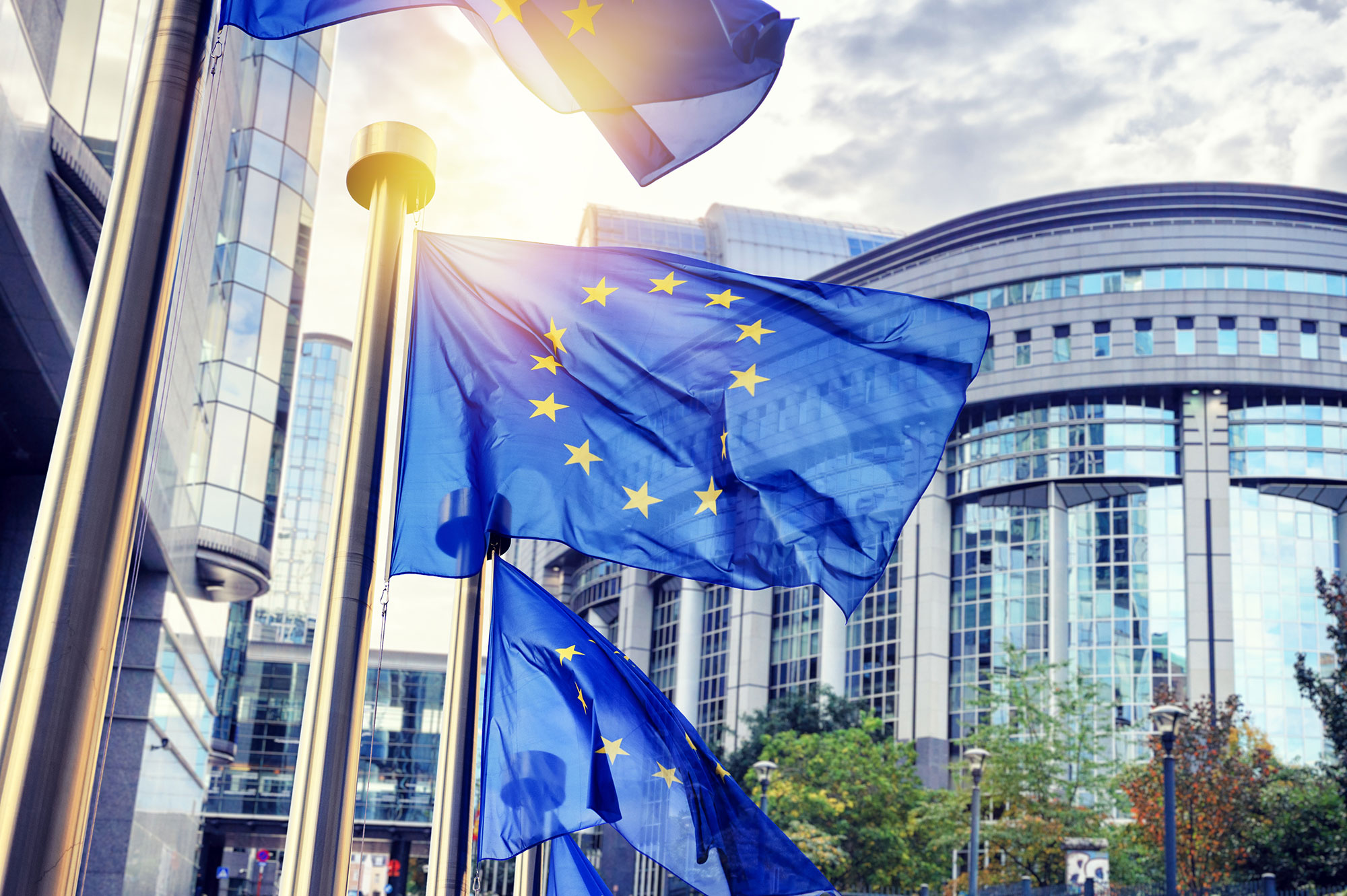 Europe : les Libéraux veulent une Europe unie et renforcée