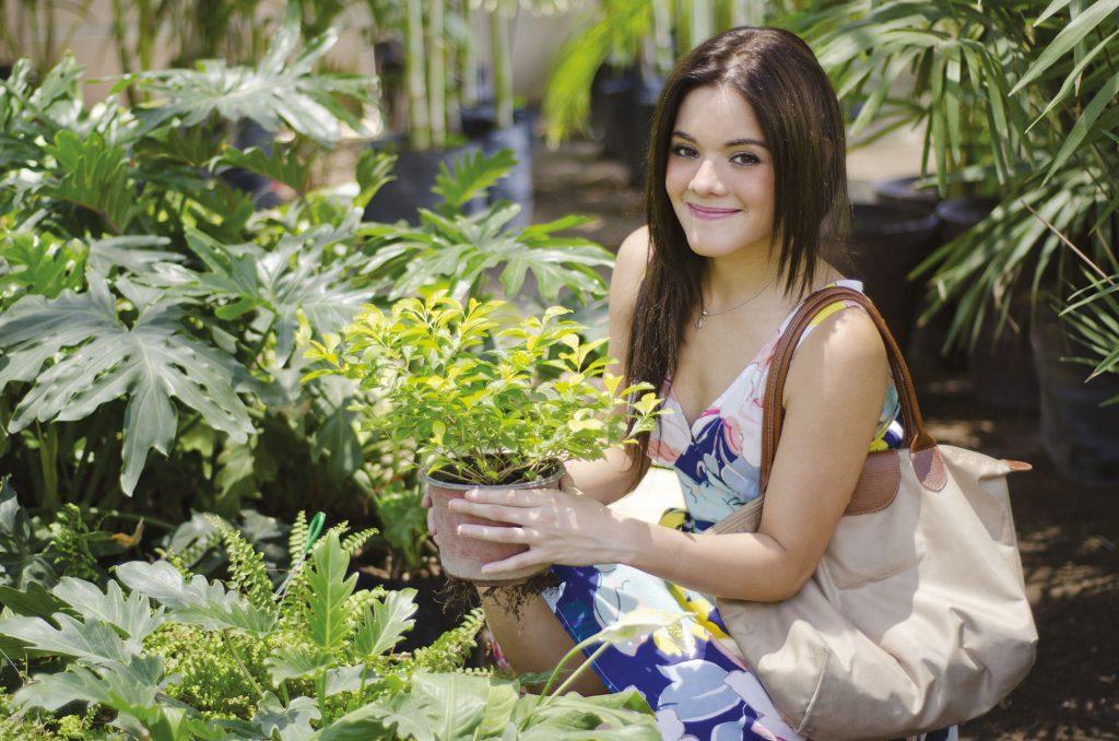 Interdiction des herbicides pour les usages privés (dont le glyphosate)