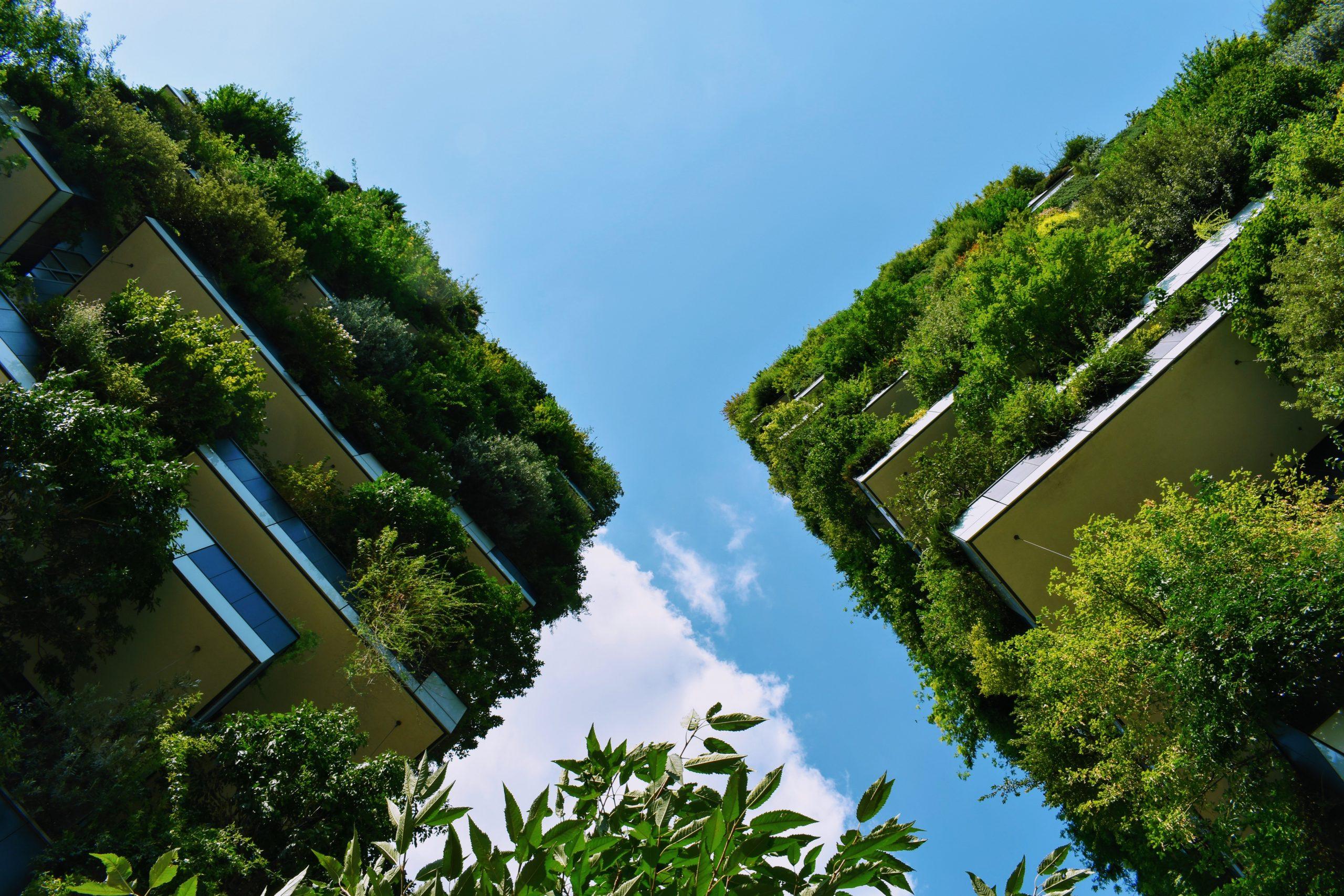 La végétalisation des bâtiments, un pas en avant dans l'exemplarité des pouvoirs publics