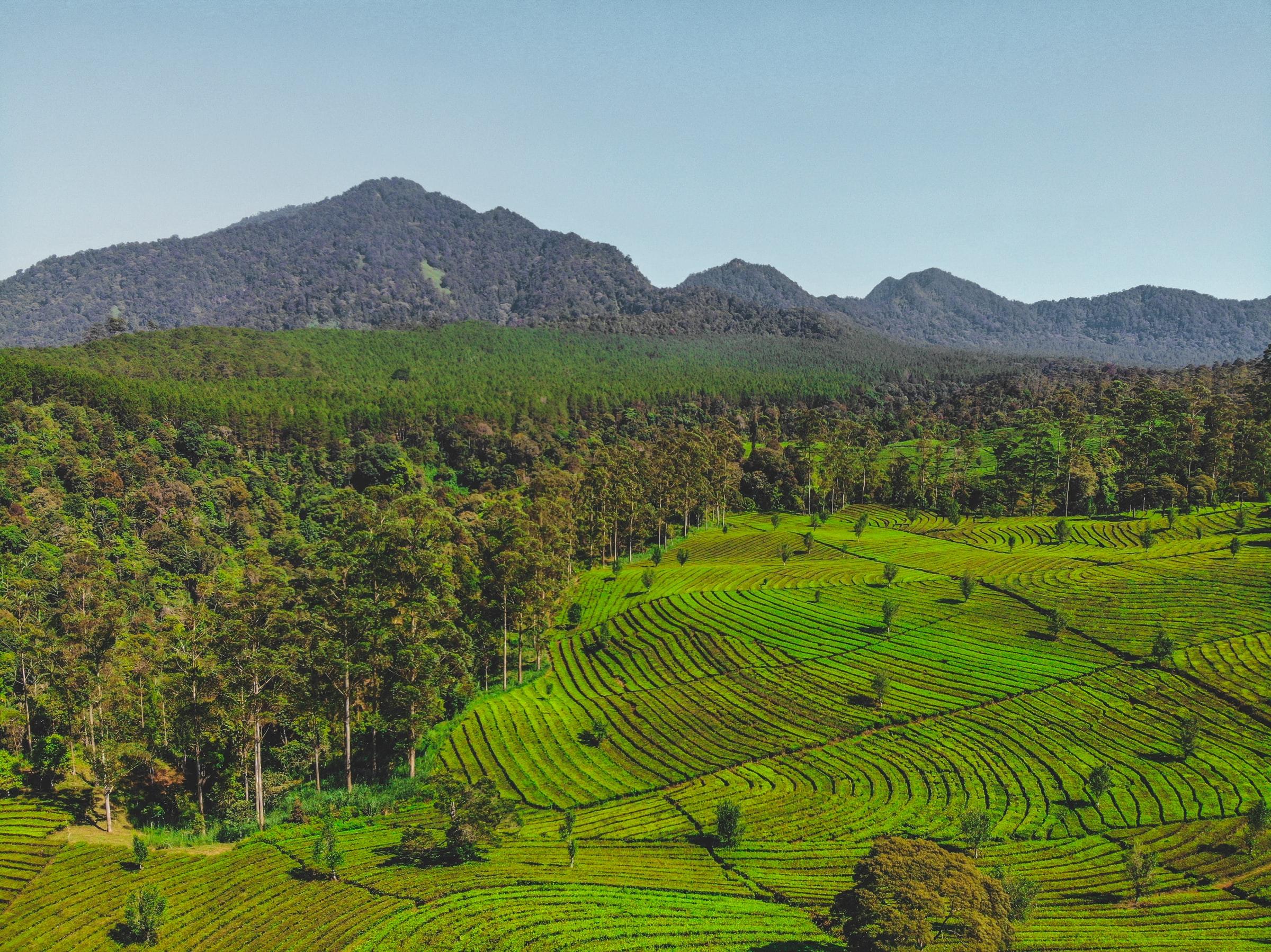 David Clarinval a rencontré le ministre indonésien de l'agriculture à Ciney