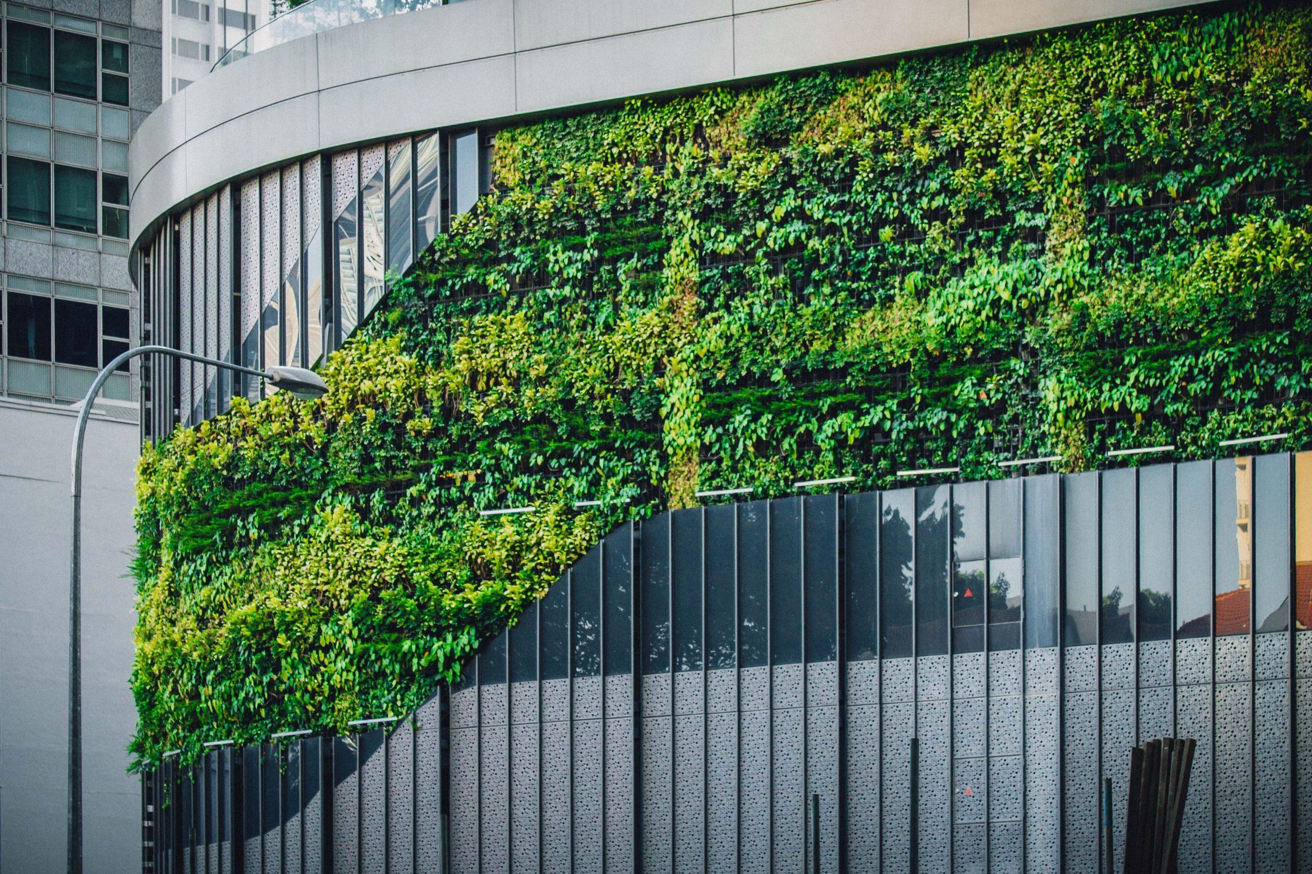 Le MR s'engage pour la végétalisation des bâtiments publics